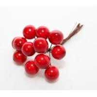 Frutti