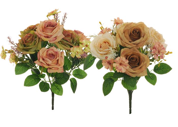 N 1 Bush Rose Cosmos Erica Mid...