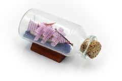 Decorazione Mare In Bottiglia Vetro Barca C/base 5,6x2,6 Cm