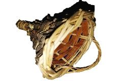 Cornucopia Mignon Legno Betulla H.14 Cm Decorazione Composizione Fiori