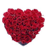 San Valentino / Festa della Mamma