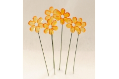 6 Fiori Arancio Su Stick