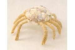 Granchio Decorato Con Conchiglie Madreperlate